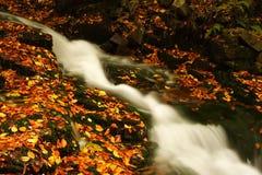 Flusso di autunno in montagne giganti Fotografie Stock Libere da Diritti