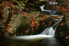 Flusso di autunno in montagne giganti Fotografie Stock