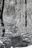 Flusso di inverno Fotografia Stock