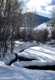 Flusso di inverno immagine stock