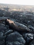 Flusso di lava dal vulcano nella grande isola Hawai dell'oceano Fotografia Stock Libera da Diritti