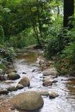 Flusso di Moutain Fotografia Stock