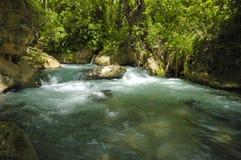 Flusso e cascata Immagine Stock