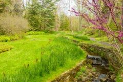Flusso in giardino Immagine Stock Libera da Diritti