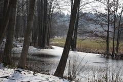 Flusso in inverno Immagine Stock