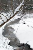Flusso in inverno   Fotografia Stock