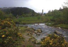 Flusso in Irlanda Fotografia Stock
