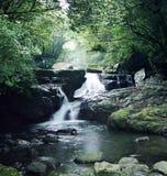 Flusso in montagna Fotografie Stock