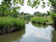 Flusso olandese Fotografie Stock