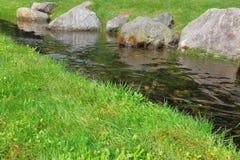 Flusso pacifico Fotografia Stock