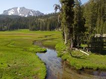Flusso pacifico nella sosta nazionale del Lassen Fotografia Stock