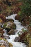 Flusso rapido della montagna fotografia stock