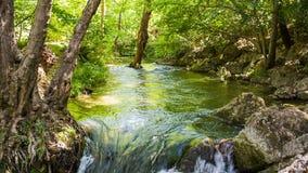 Flusso rapido di un fiume della montagna stock footage