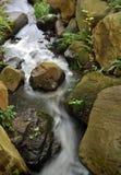 Flusso scorrente del fiume Fotografia Stock