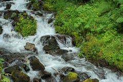 Flusso scorrente veloce Fotografia Stock Libera da Diritti