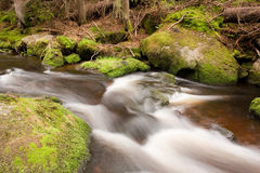 Flusso selvaggio della montagna Immagine Stock Libera da Diritti