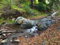 Flusso sopra le rocce Immagini Stock Libere da Diritti