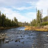 Flusso in Yellowstone immagini stock libere da diritti