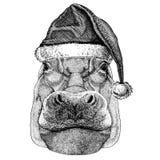 Flusspferd, Nilpferd, Ungetüm, Flusspferde-tragender Weihnachten-Santa Claus-Hut Handgezogenes Bild für Tätowierung, Emblem, Ausw vektor abbildung