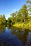 Flussquerneigung im Wald Stockfotografie