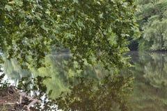 Flussreflexionen Lizenzfreies Stockbild
