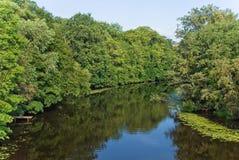 Flussschlaufe Stockfoto
