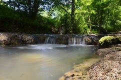 Flussschwimmen lizenzfreie stockfotos