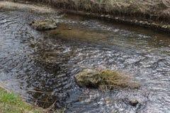 Flusssich hin- und herbewegende Oberflächenansicht mit der Spiegelung von Gegenständen und von kleiner Welle lizenzfreie stockfotografie