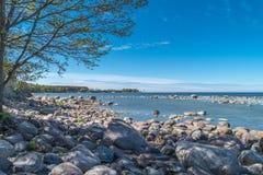 Flusssteine auf der Küste Lizenzfreie Stockbilder