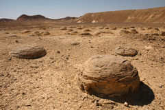 Flusssteine in der Wüste stockfotografie