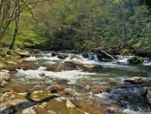 Flusssteine in Whitetop Laurel Creek Lizenzfreie Stockfotos