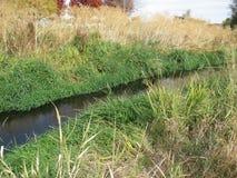 Flussstrom Herbstfeld Lizenzfreie Stockbilder