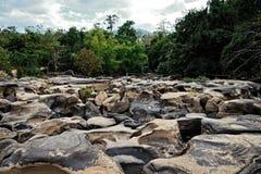Flussstrom mit Felsen in forrest Stockfotografie