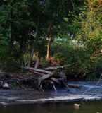 Flussszene Lizenzfreies Stockbild
