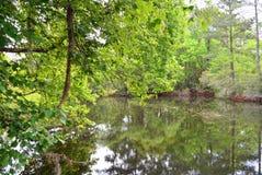 Flussszene Stockfotos