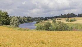 Flussszene Lizenzfreie Stockfotografie