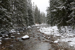 Flussszene in der Winterzeit Lizenzfreies Stockfoto