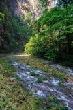 Flussszene von goldenem Whip Stream Linie, Zhangjiajie Natio bereisend Stockfotografie