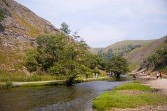 Flusstaube und -landschaft Stockfotos