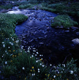 Flussufer Lizenzfreie Stockfotos