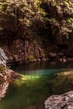 Flussufer mit grünen Tönen und ausgezeichnetes Wasser in Akame stockfotos