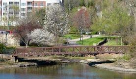 Flussufer-Park Lizenzfreie Stockfotos