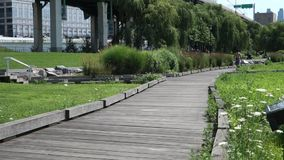 Flussufer-Park Süd stock footage