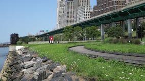 Flussufer-Park Süd stock video