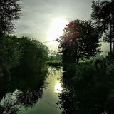 Flussufer-Reflexionen Stockfotos