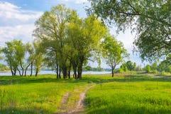 Flussufer von Dnepr-Fluss lizenzfreies stockfoto