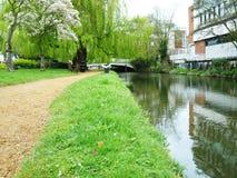 Flussufer von Fluss Wey bei Guildford Stockfotografie