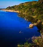 Flussuferläufer-Teich Lizenzfreie Stockbilder