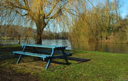 Flussuferpicknick Stockbild