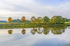 Flussuferszene mit Bäumen, die im Fluss Tauber reflektiert werden Stockfotografie
